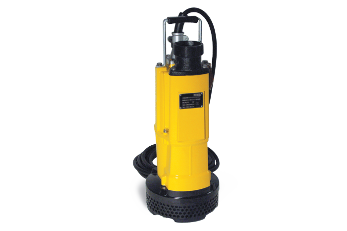 PS 3 2200 single phase submersible pump